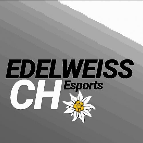 EWE/ EDELWEISS Esports sucht starke Player 2077