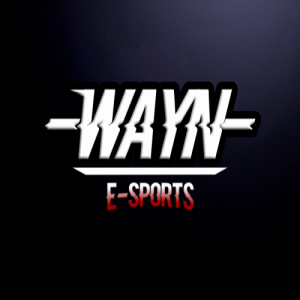WAYN eSports Fortnite Pro Team 1141