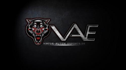 Virtus -Autem-eSports 994